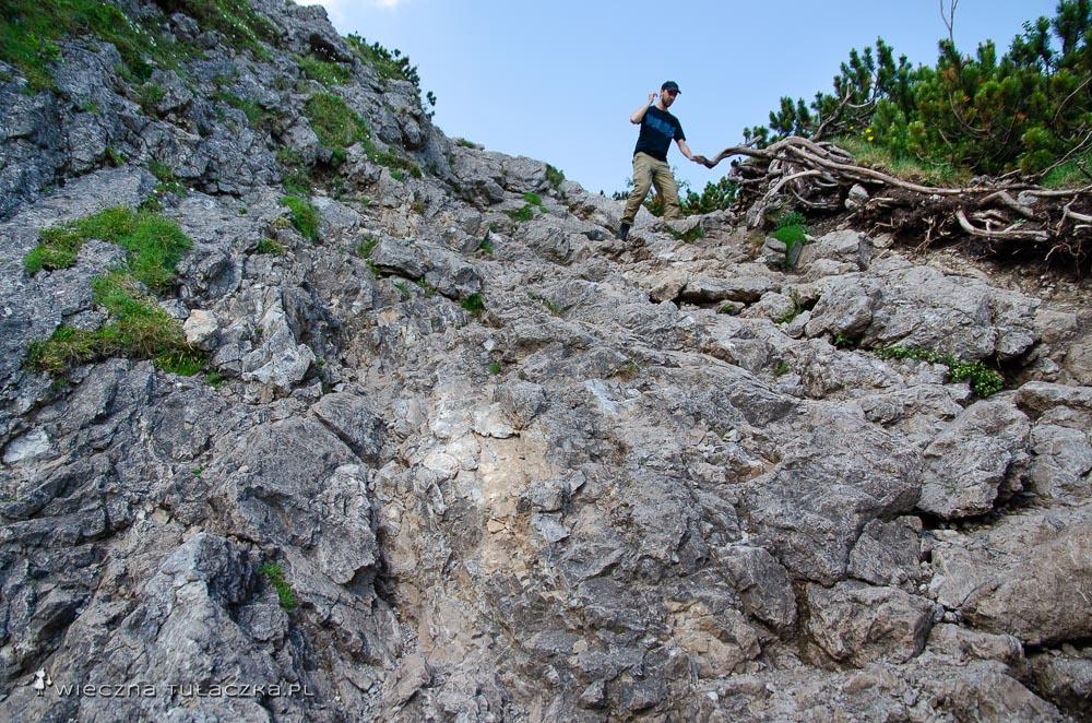 Szlak na Sarnią Skałę