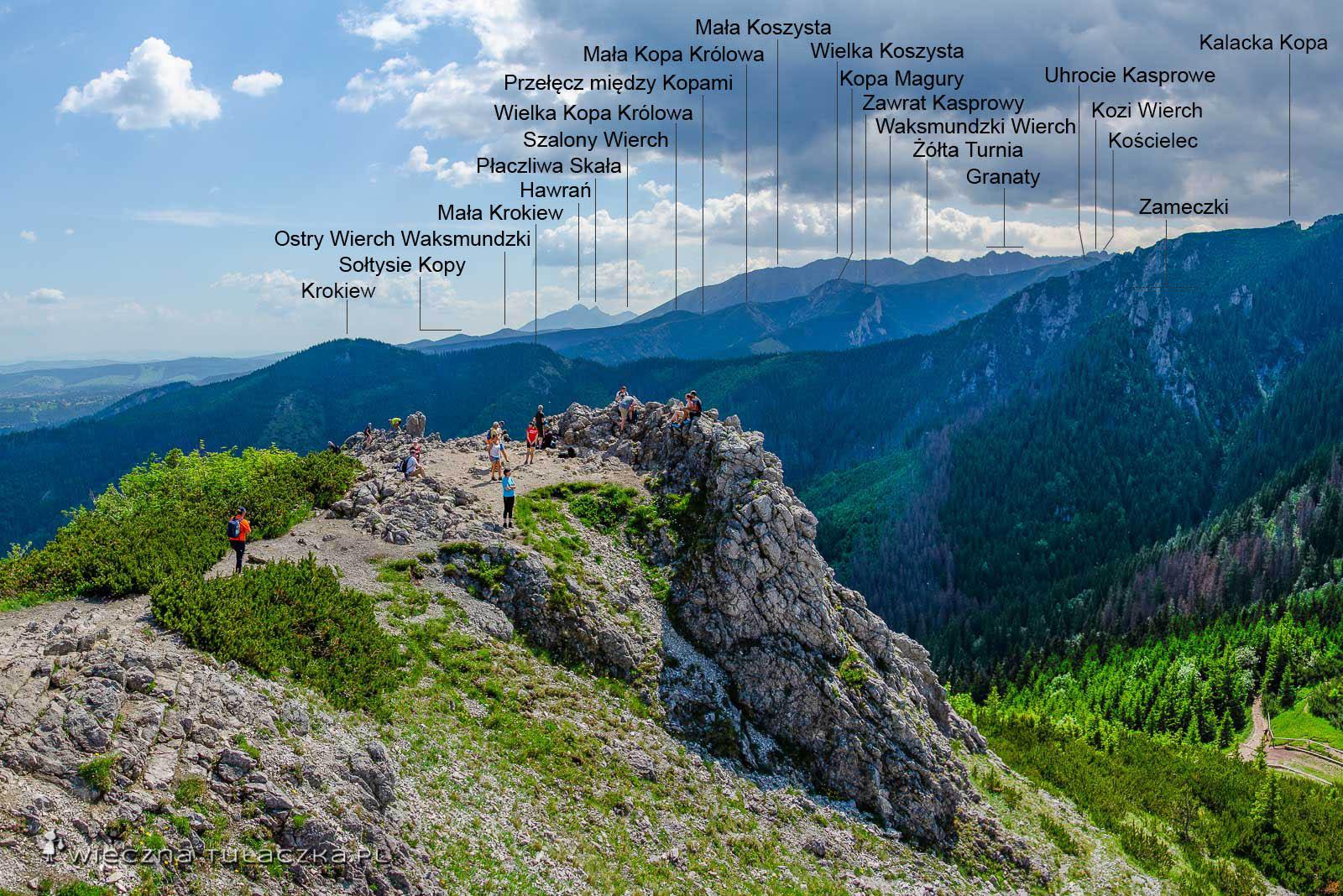 Panorama z Sarniej Skały