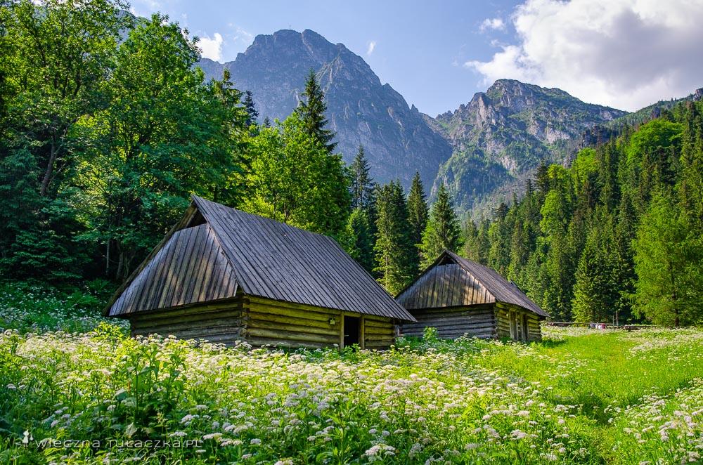 Polana Strążyska w Tatrach