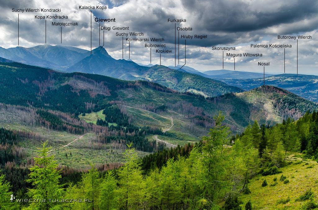 Kopieniec Wielki, panorama