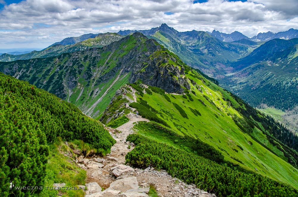 Szlak na Suche Czuby - opis trudności