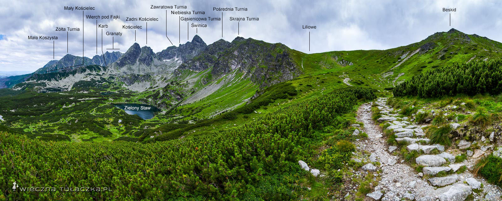 Zielony szlak na Przełęcz Liliowe, panorama ze szlaku