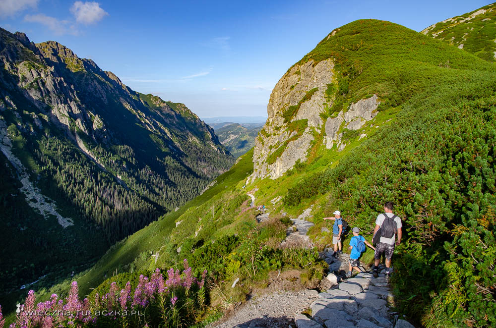 Szlak do Doliny Roztoki