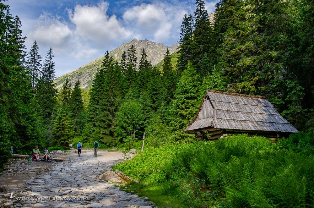 Zielony szlak do Doliny Pięciu Stawów