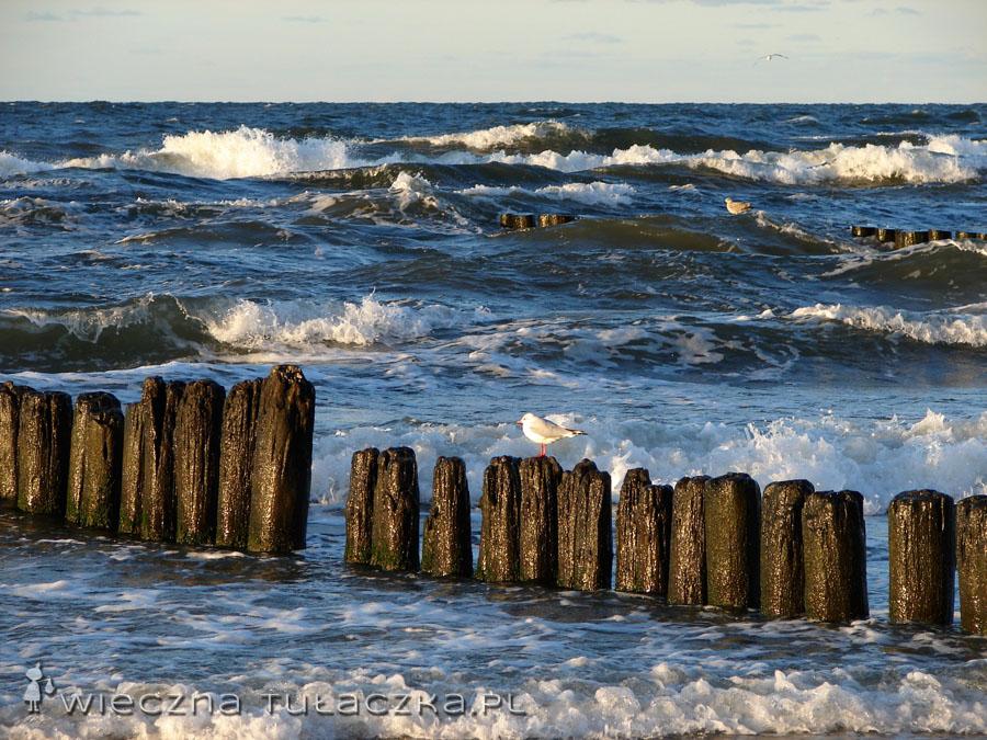 wakacje nad morzem jesienia (10)
