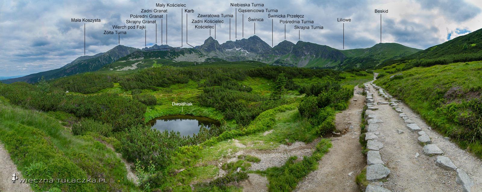 Panorama Zielonej Doliny Gąsienicowej