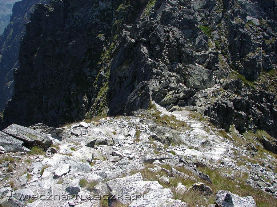Widok ze zboczy Skrajnego na Skrajną Sieczkową Przełączkę