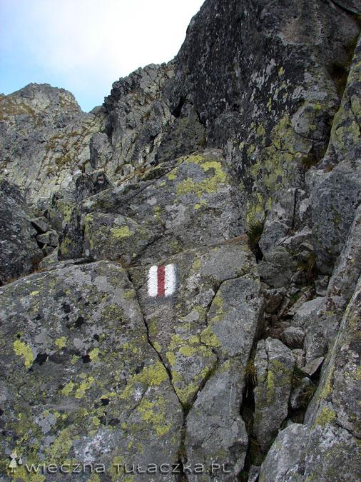 Szlak za kominem w stronę Granatów jest wąski, ale pozbawiony trudności. Ot przejście po skałach wśród skał :)