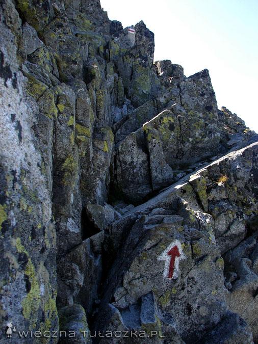 Szlak na Kozich Czubach