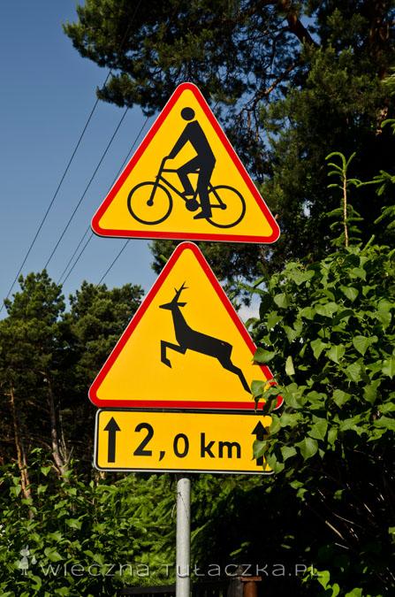 Proszę bardzo! Dobrze, że rowerzyści są przynajmniej informowani o wyskakujących dzikich zwierzętach :P