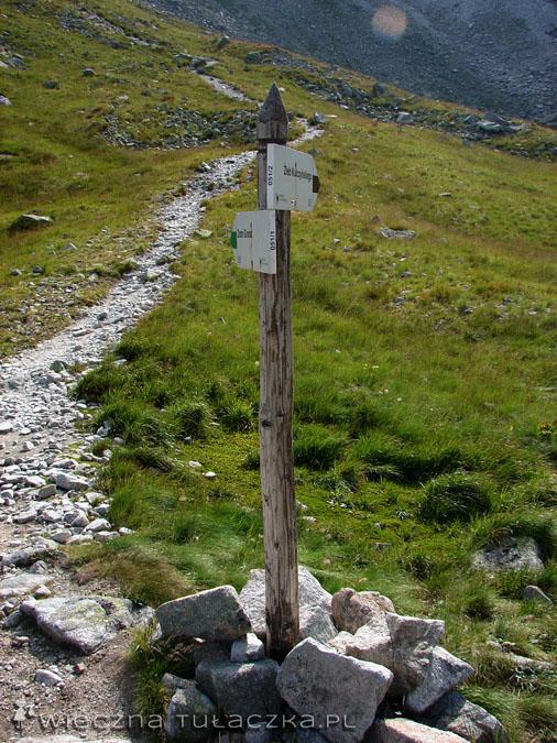 Dalsza część szlaku obstawiona jest przez czarne oznaczenia.