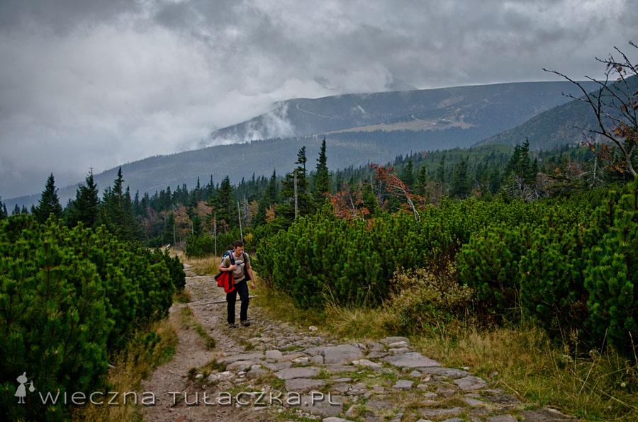 Podejście zielonym szlakiem na skraj Wielkiego Kotła
