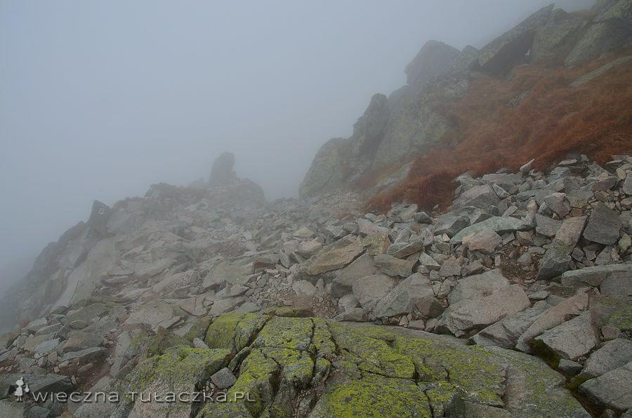Szlak na Przełęcz Świnicką
