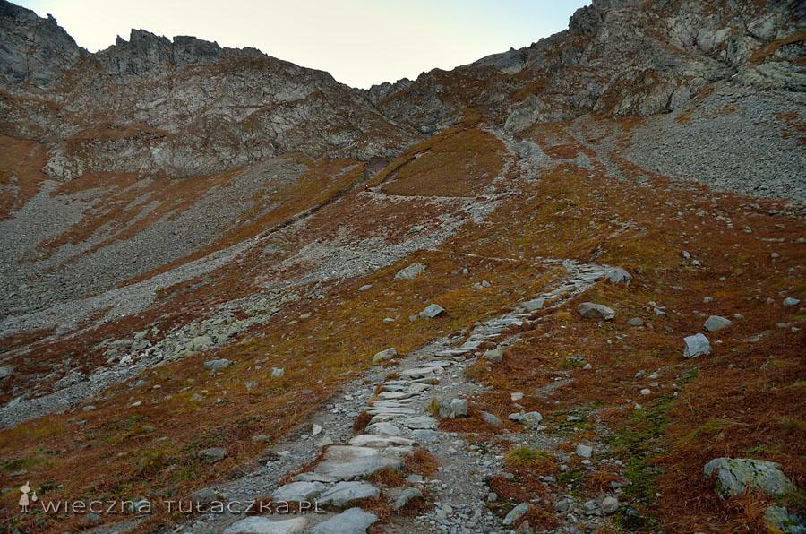 Ostatnie zakosy szlaku doprowadzają do skałek, w których zamontowano łańcuchy.