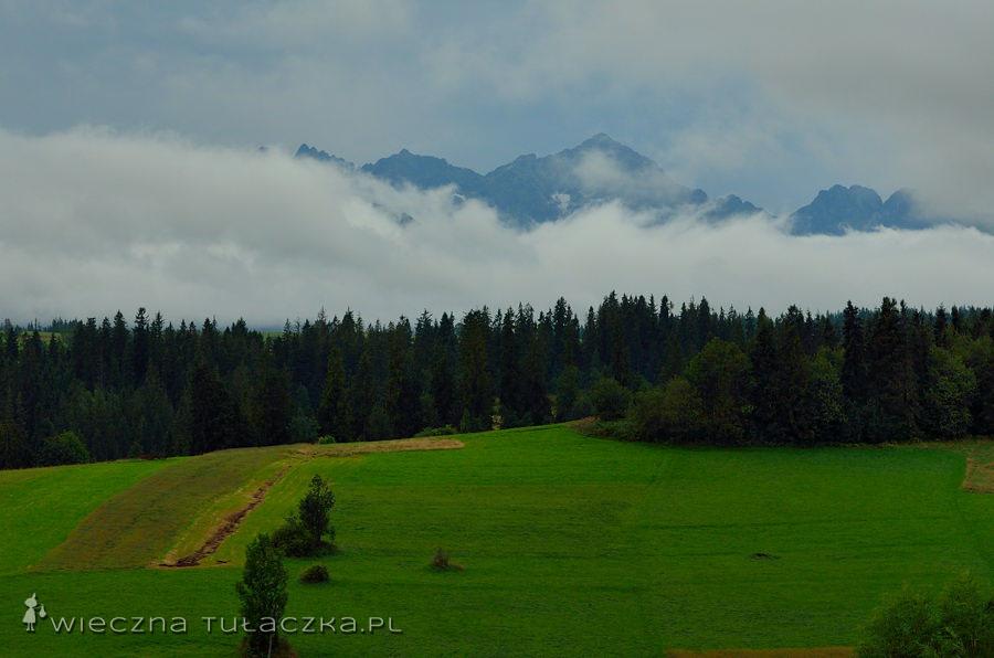 Tatry z Bukowiny Tatrzańskiej