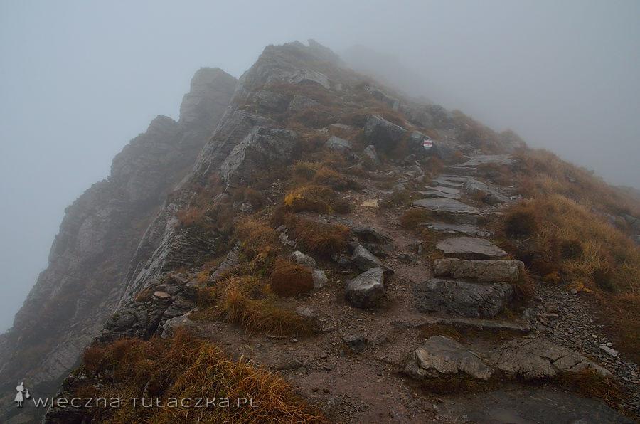 Szlak na Krzesanicę