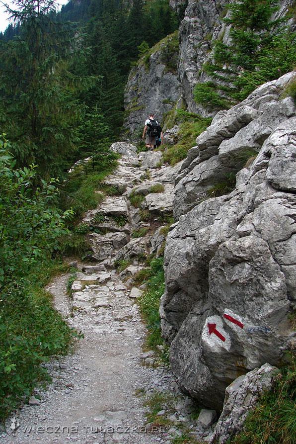 Szlak do Jaskini Mylnej i Obłazkowej