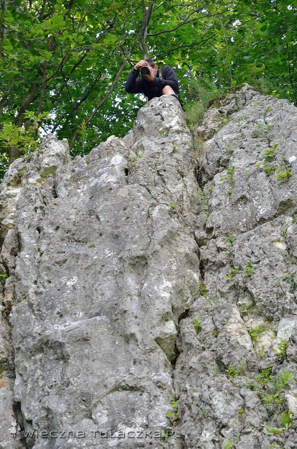Skały w Dolinie Będkowskiej