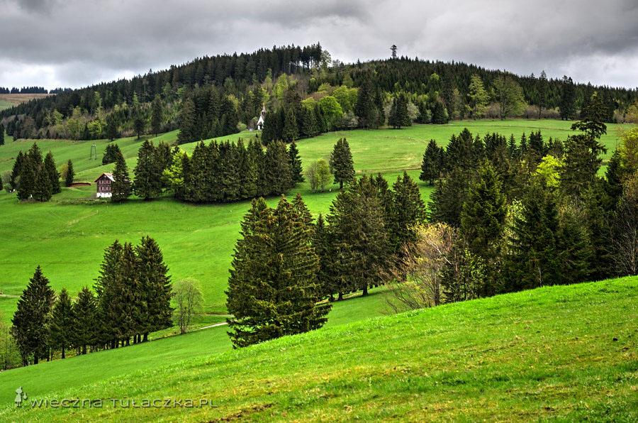 Kiedyś opisywano Szwarcwald jako nieprzebyty gąszcz zamieszkany wyłącznie przez barbarzyńców i dzikie zwierzęta.