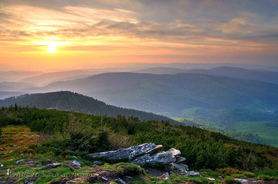 Panorama z małej Babiej Góry