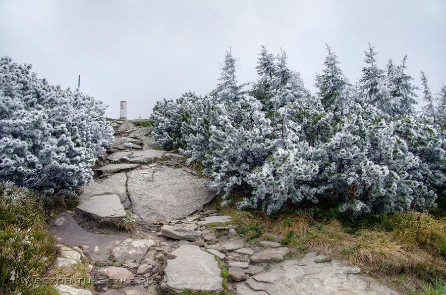 Szlak na Pilsko