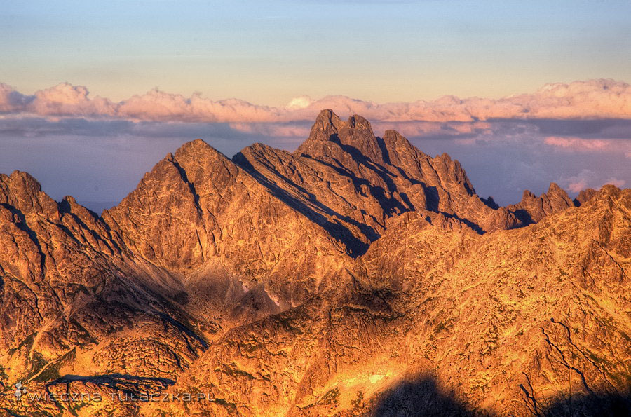 Mała Wysoka, Staroleśny szczyt