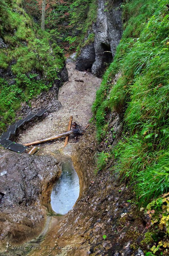 Korytowy Wodospad, Sucha Bela