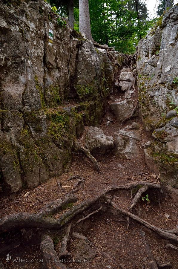 Tomášovský výhľad - szlak