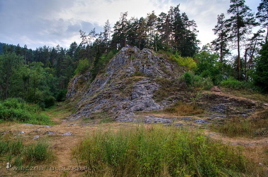 Zaraz wdrapiemy się na widoczną skałę, by podziwiać...