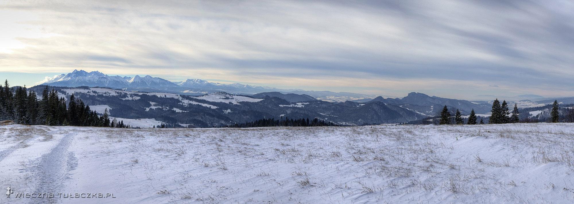 Pokrywisko, panorama na Tatry i Pieniny