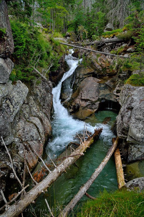 Skryty Wodospad w Dolinie Zimnej Wody