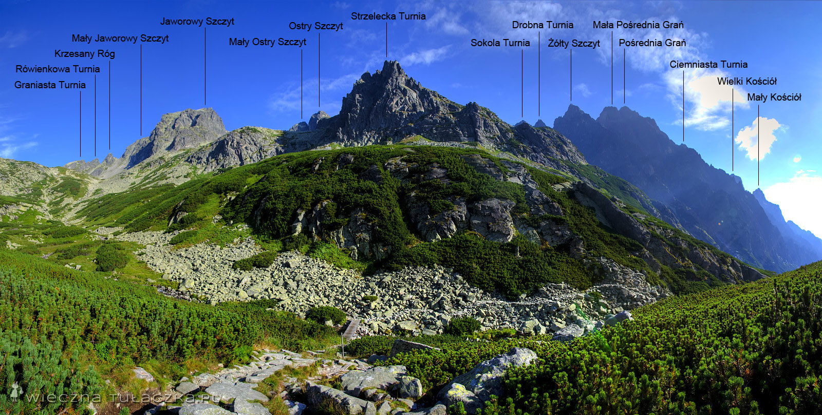 Dolina Staroleśna, opisana panorama