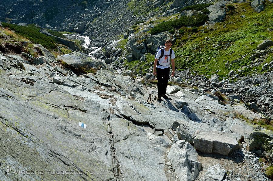 Dolina Staroleśna, odcinek ubezpieczony łańcuchem