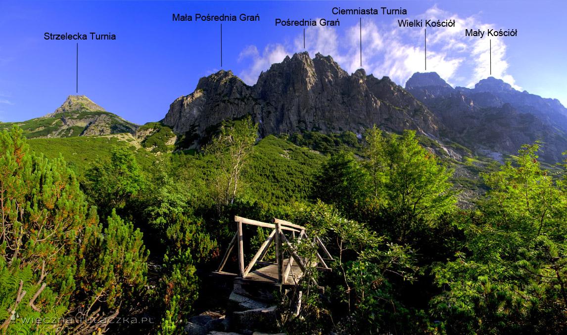 Dolina Staroleśna, widok na Pośrednią Grań