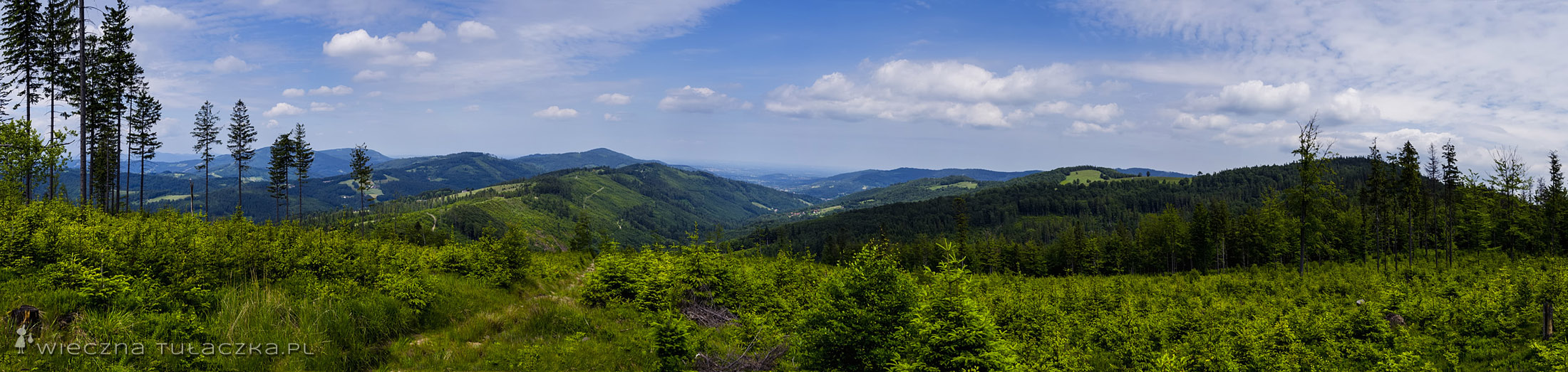 Panorama z Grabowej