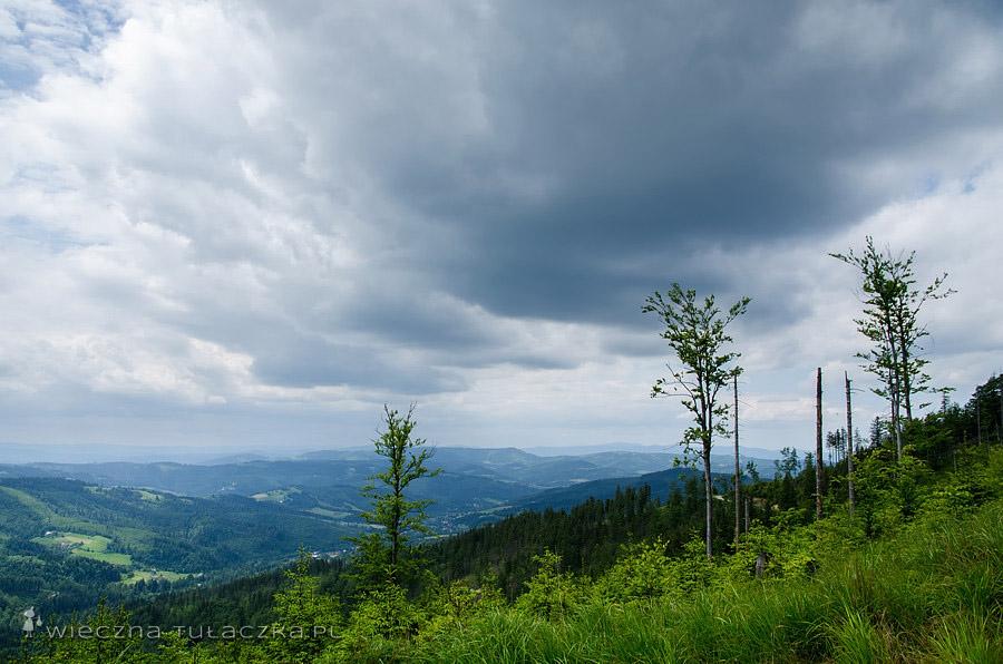 Widok na stronę Malinki, Beskid Śląski