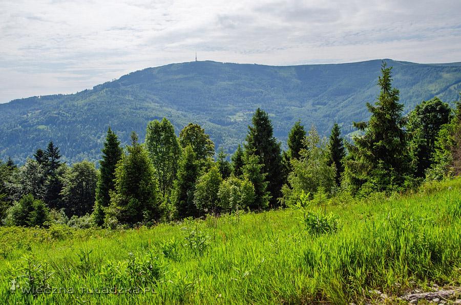 Skrzyczne z czerwonego szlaku z Przełęczy Karkoszczonka