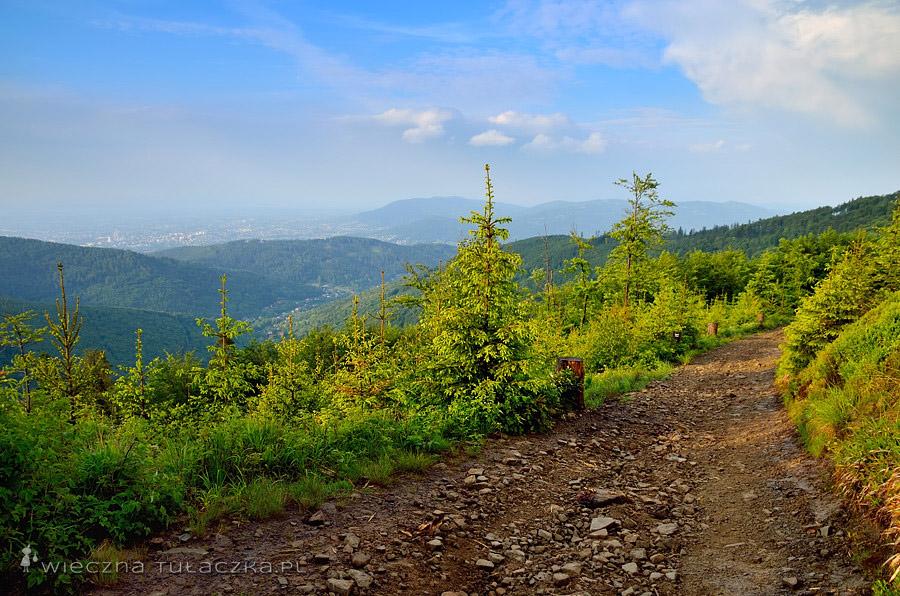 Szlak na Klimczok