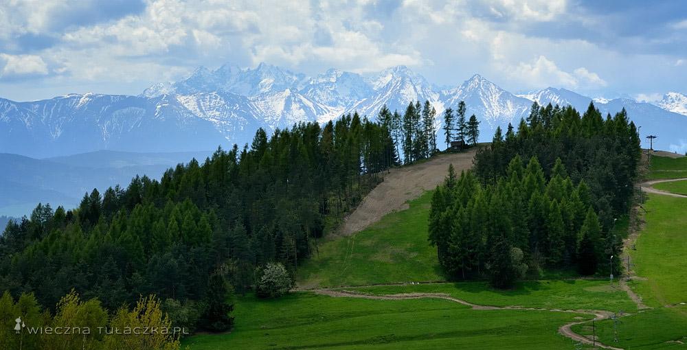 Góra Wdżar z widokiem na Tatry