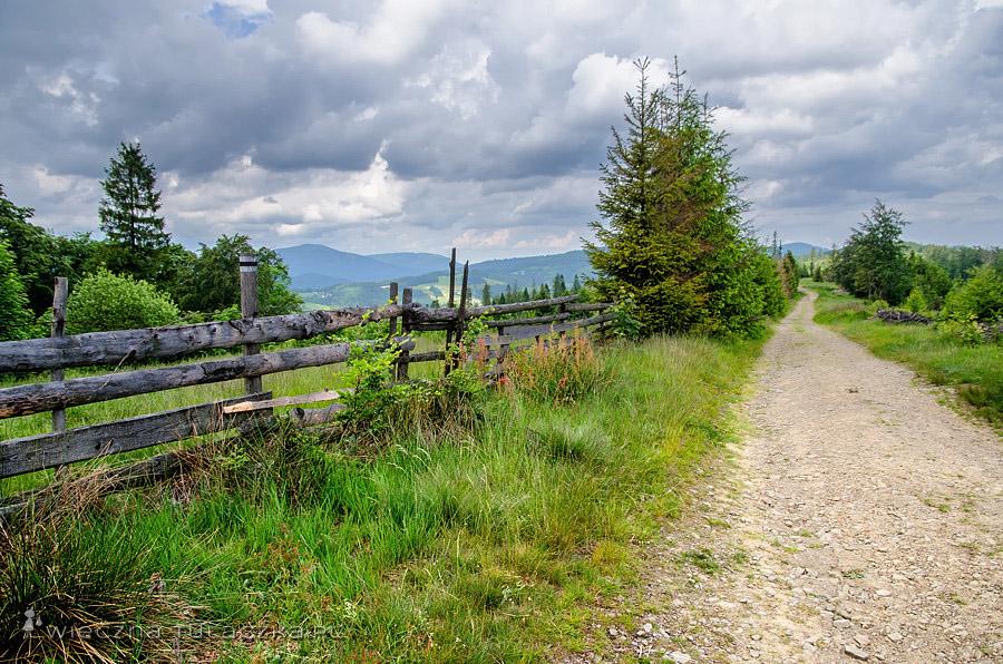 Czarny szlak na grzbiecie Starego Gronia