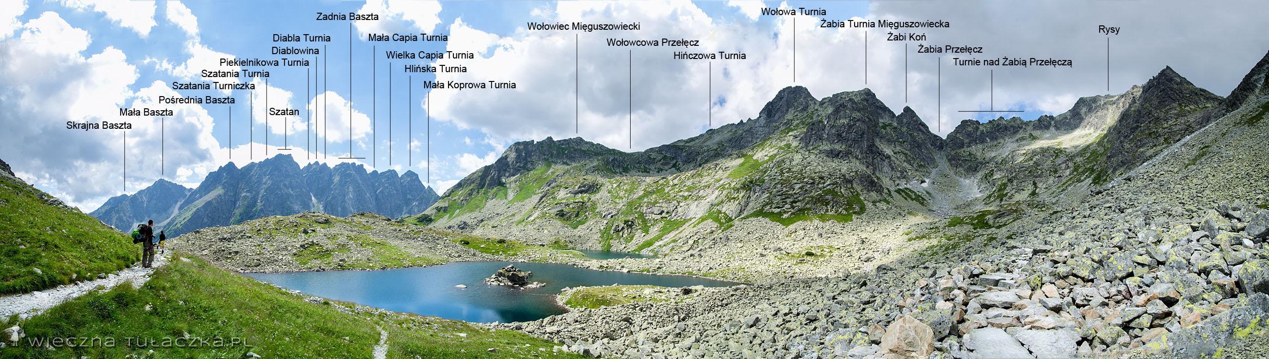 Żabia Dolina Mięguszowiecka - panorama