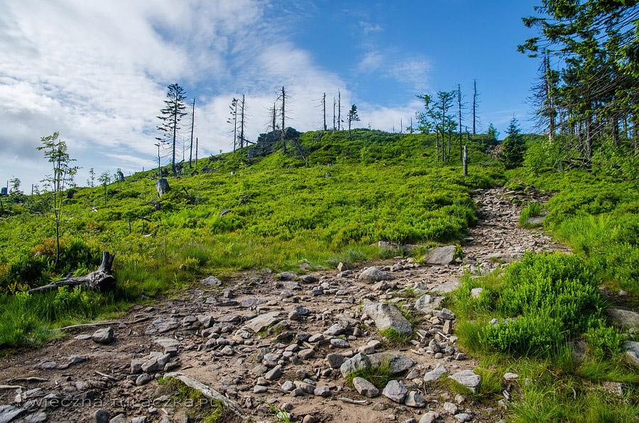 Niebieski szlak na Baranią Górę