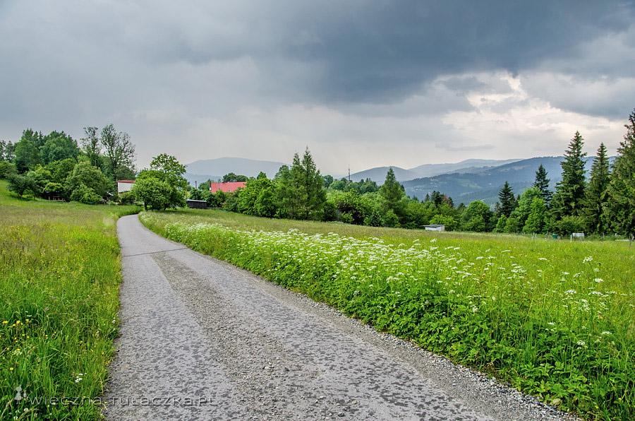 Szlak przez Kozińce