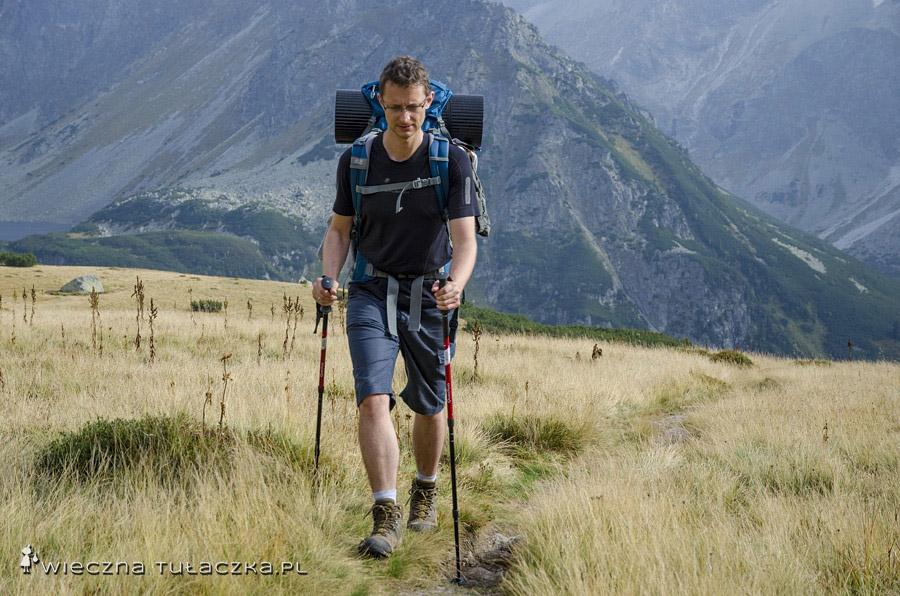 Kije trekkingowe Quechua Forclaz 300