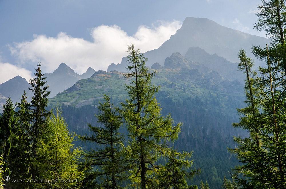 Krywań z Doliny Koprowej