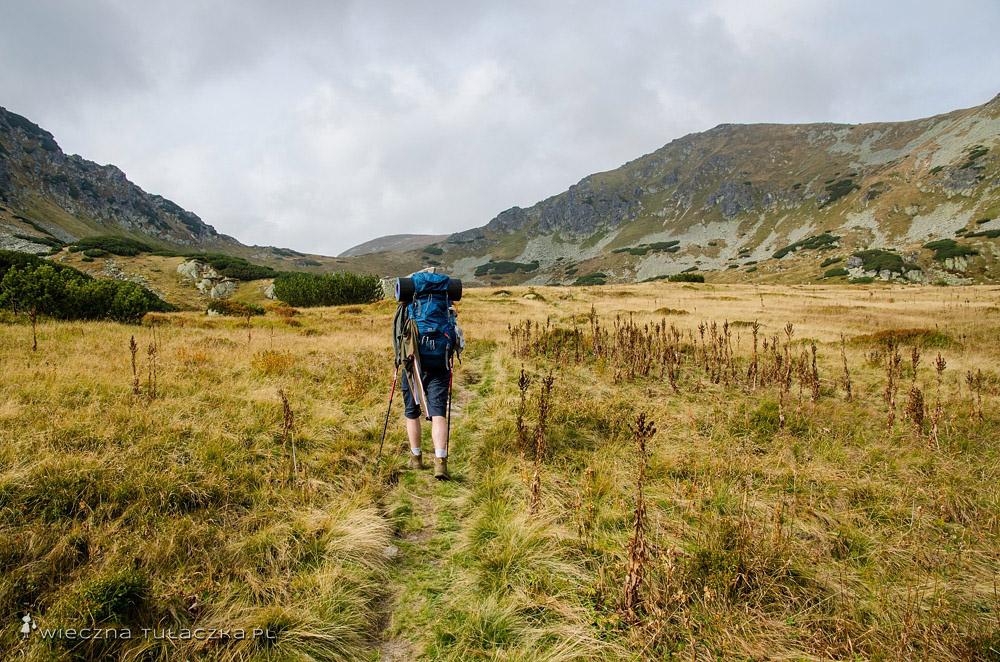 Kobyla Dolina, szlak na Zawory