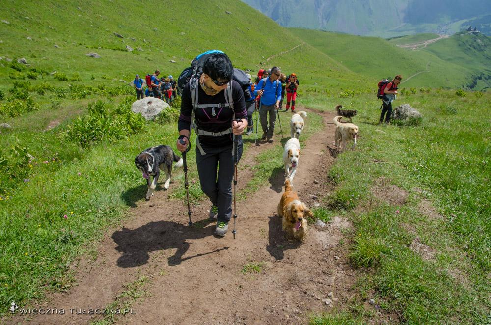 Droga na Kazbek