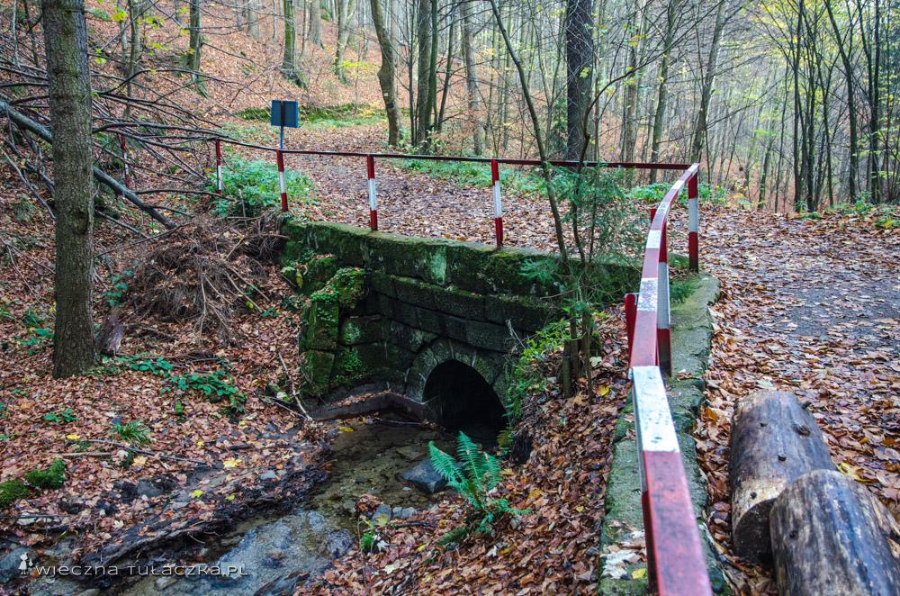 Mostek nad Pośną