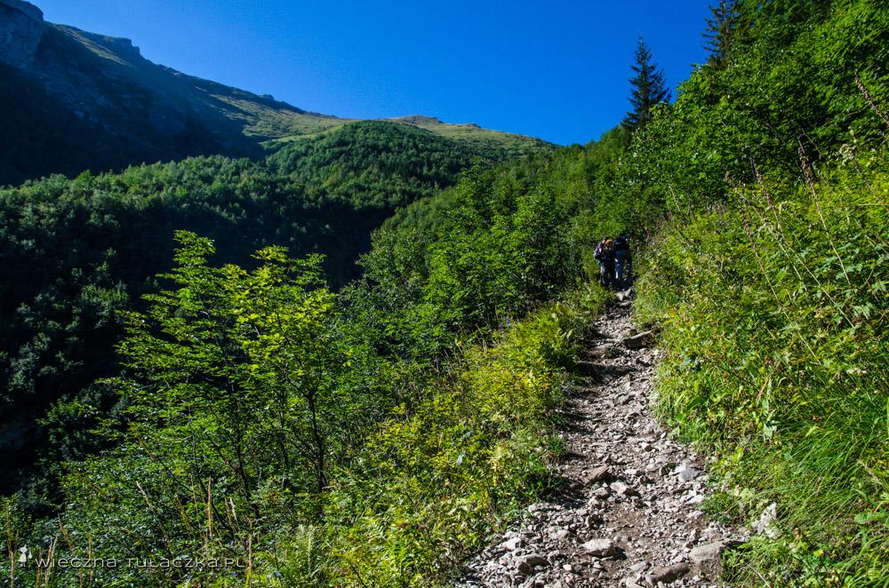 Szlak na Szeroką Przełęcz w Tatrach Bielskich
