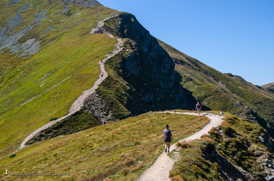 Szlak na Starorobociański Wiercu w rejonie Gaborowej Przełęczy